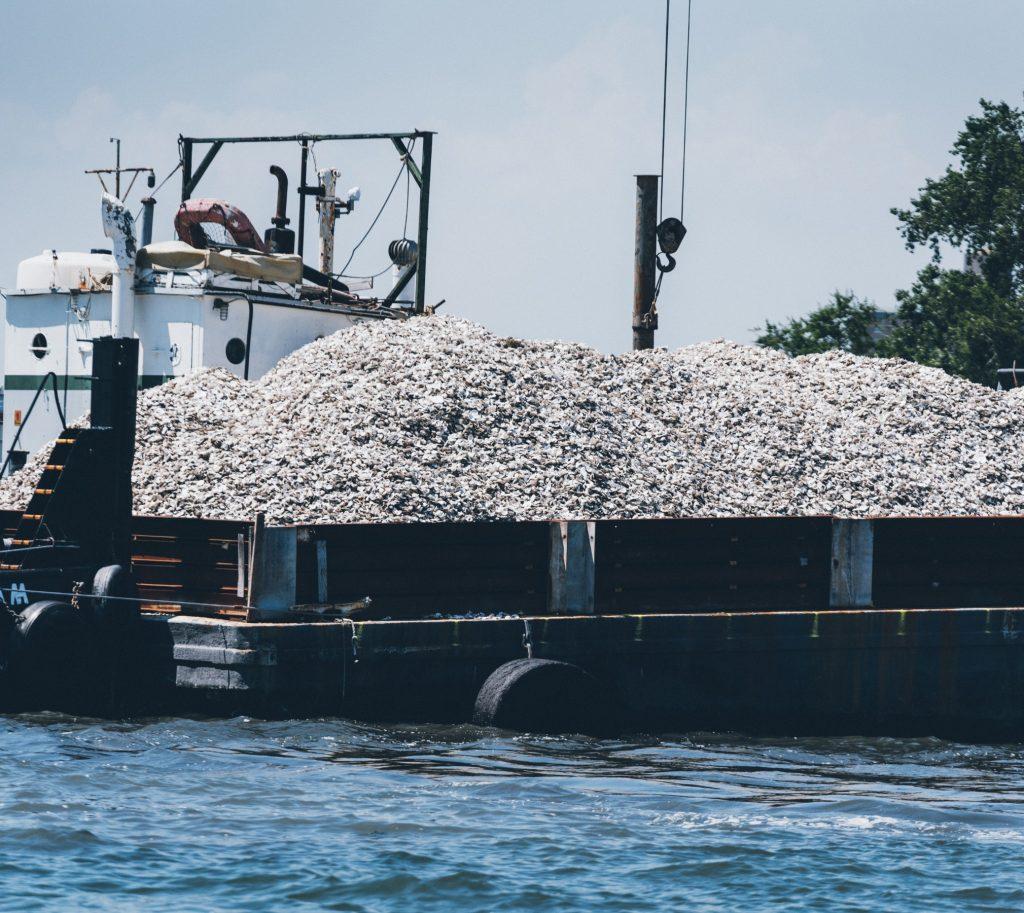Billion Oyster Project 1
