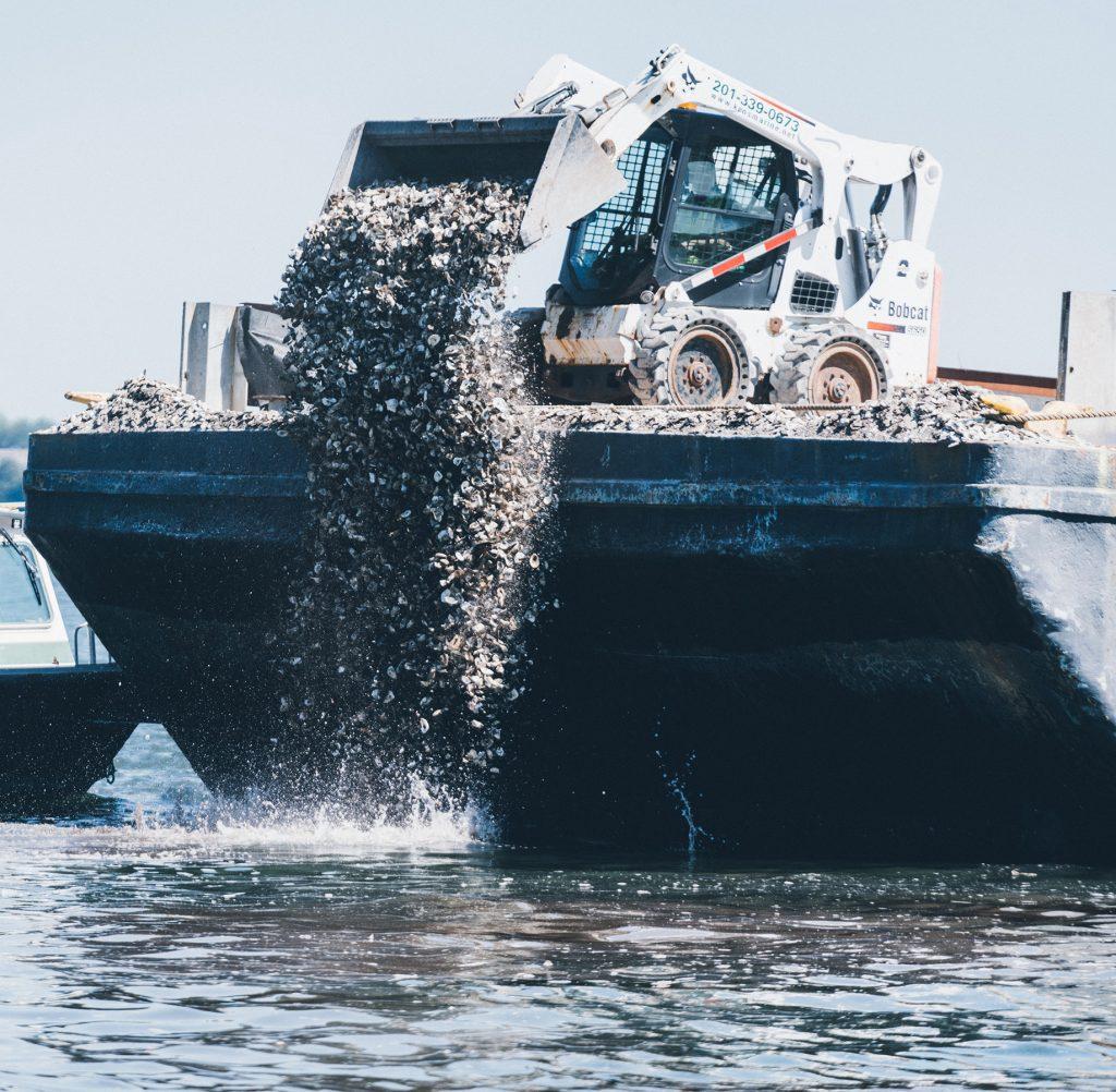 Billion Oyster Project 2