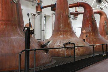 Rum Distillation