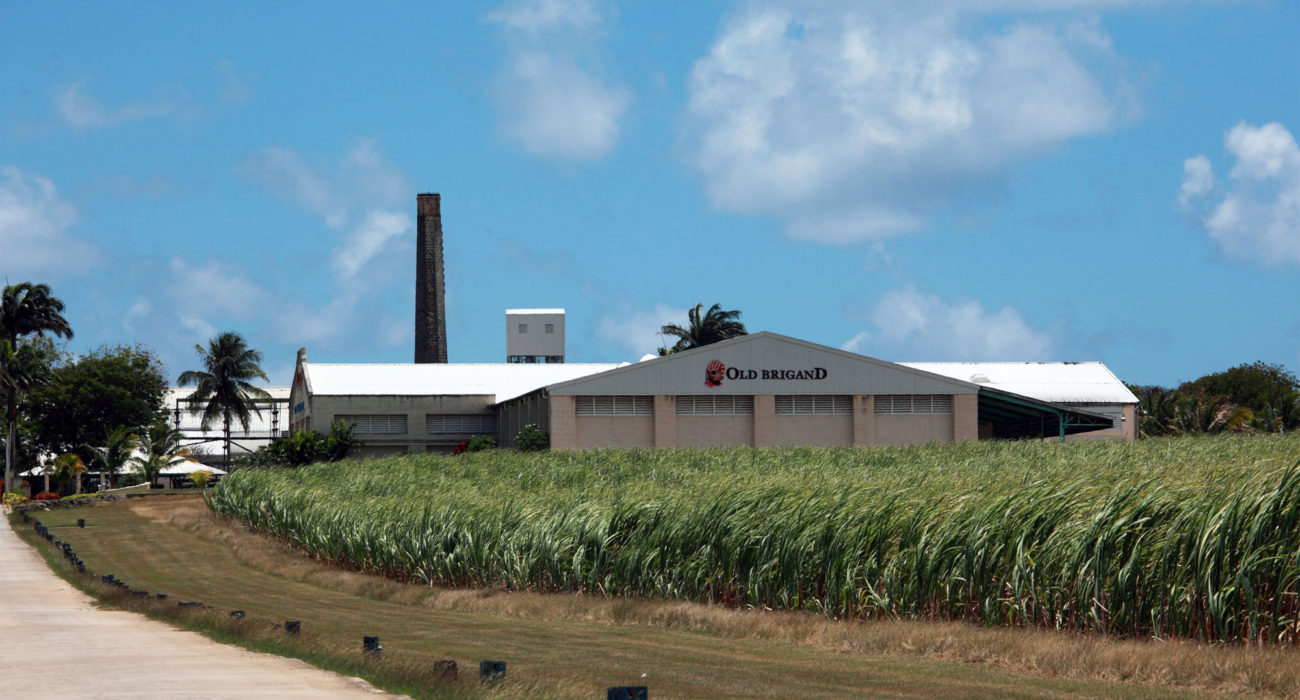 Foursquare-Distillery-Barbados-1300x700