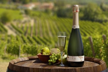 ThinK Wine Group Prosecco Vineyard
